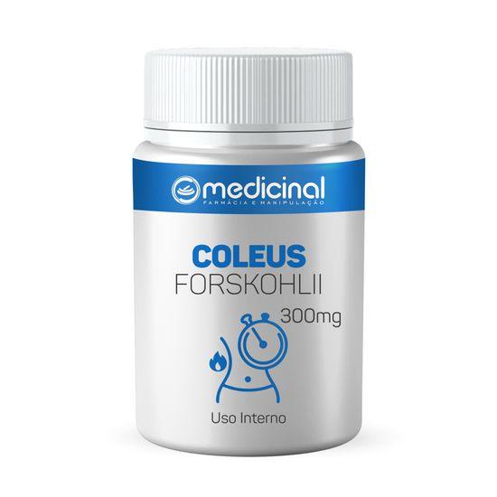 coleus-FORSKOHLII