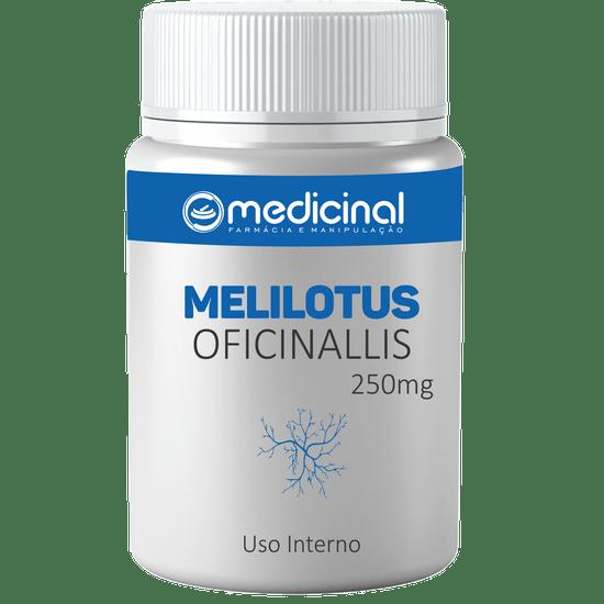 Melilotus-oficinalis